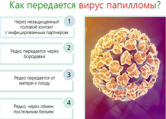 Вирус папилломы человека – симптомы и лечение, вирус папилломы ...