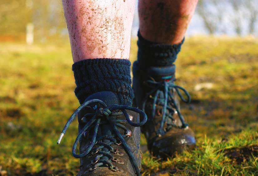 Варикозный дерматит нижних конечностей: симптомы, лечение, фото