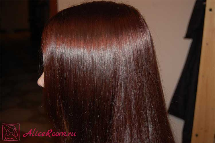 Репчатый лук от выпадения волос | Рост волос | aliceroom.ru