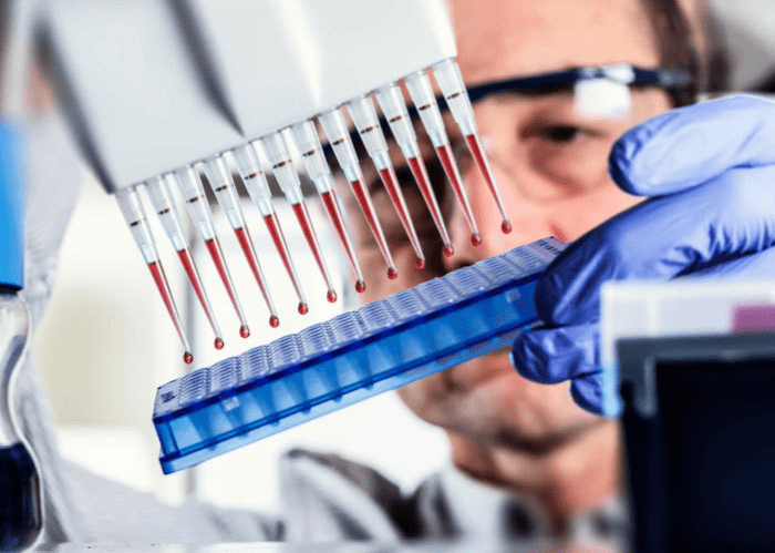 Кровь на ВПЧ - как сдать анализ крови на вирус папилломы человека